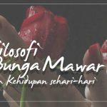 7 Filosofi dari Bunga Mawar yang wajib kamu ketahui
